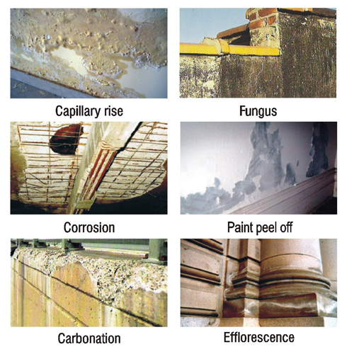 Fine Cement Product :: Zycosil Water Proofing